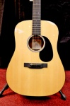 Martin DSRG Limited GLOSS Dread with Hard Case