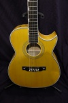 Guild 2014 Doyle Dykes 12 String Cutaway Electric Acoustic