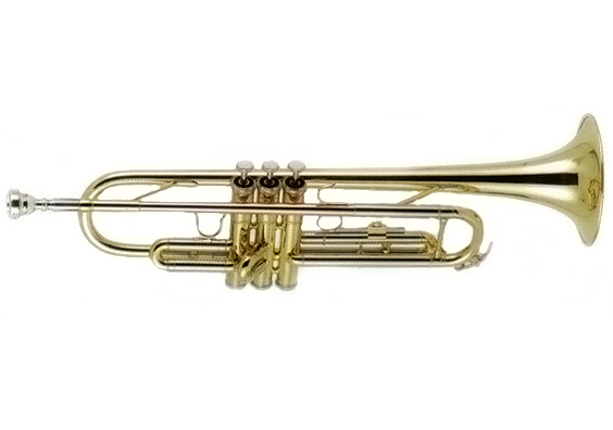 Palm Winds PW702 Silver Trumpet